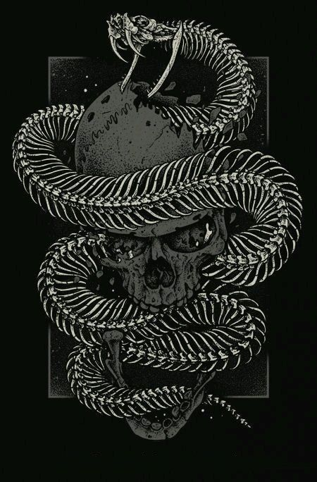 Whats Mine Is Mine Snake Drawing Snake Art Skull Art