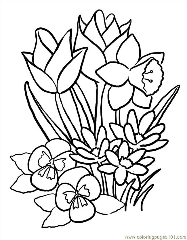 Flower Coloring Pages For Adults Free Printable Coloring Page