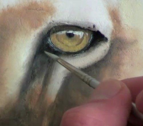 Comment Peindre Un Lion | Peinture Acrylique - Huile Tutos Vidéos
