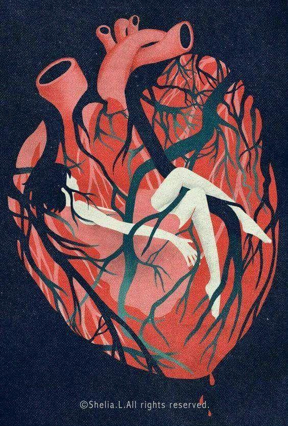Pin by Barezvon on Barez | Pinterest | Anatomy, Heart art and ...