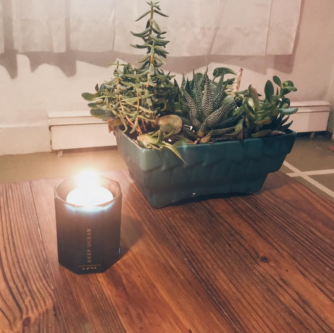 Trying to stay #cozy today with this freezing weather! Im just waiting for one last warm day.  How are you guys spending your Saturday? Check out my latest blog post in my bio! . . . . . . . . #candles #succulents #plants #garden #home #blogger #bloglife #november #lifestyleblogger #lifestyle #photography #saturday #saturdaymorning #saturdayfun #saturdayvibes #fall #snow #cold #bloggerlife #apartmentliving #selfcare #weekendvibes #warm #warmandcozy #hygge #hyggehome #hygge lifestyle photography