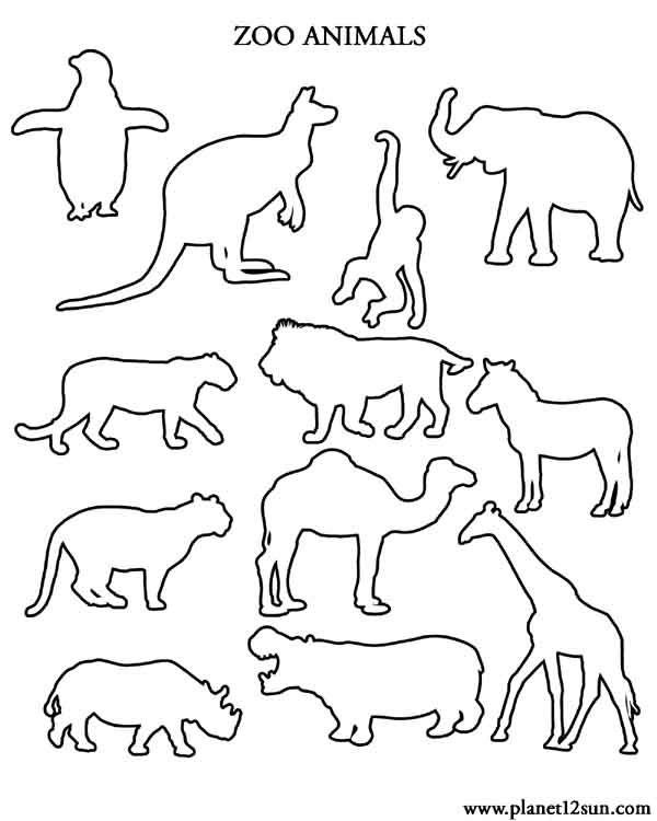 educational coloring pages zoo animals - photo#43