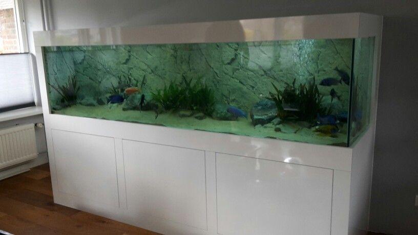 Aquarium Als Interieurmeubel In De Woonkamer Aquarium Speelkamer Woonkamer