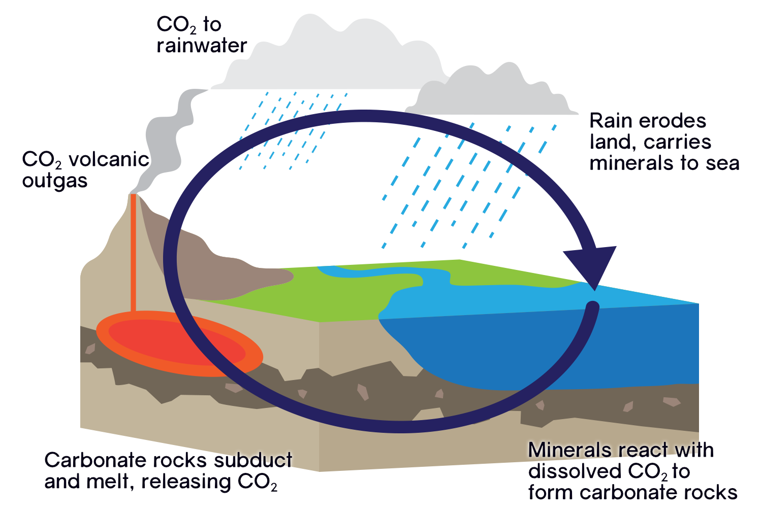 The geological carbon cycle: carbon dioxide released by volcanoes is