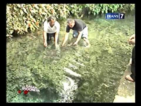Net17 Keindahan Alam Ambon Manise Youtube Indonesia Dasar Sungai Alam