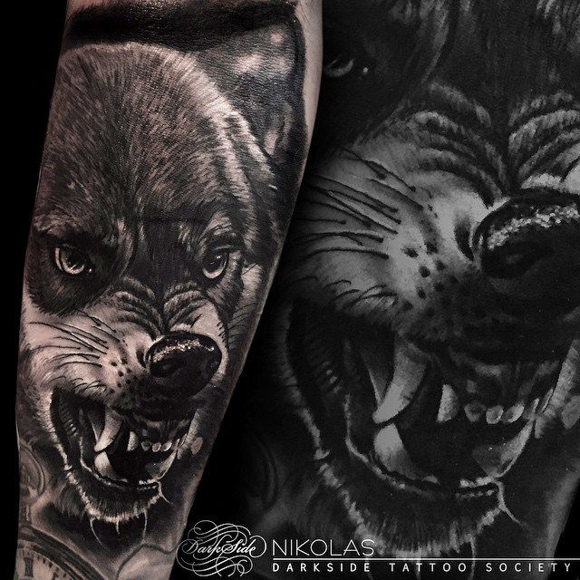 angry growling wolf tattoo on arm wolf tattoos wolf and tattoo rh pinterest com angry wolf head tattoo angry wolf tattoo