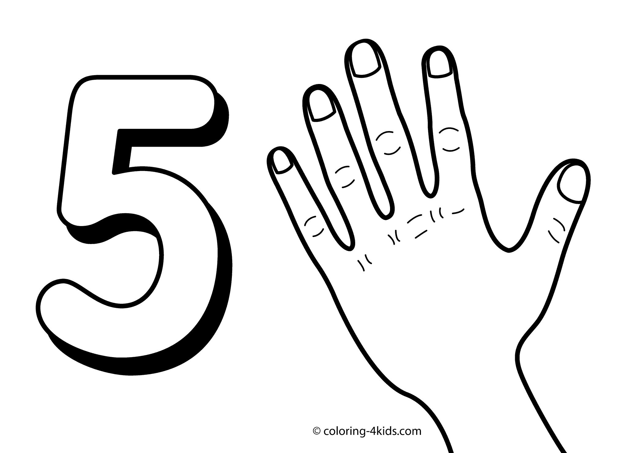 35 Coloring Pages 5 Senses Free Printable Numbers Preschool