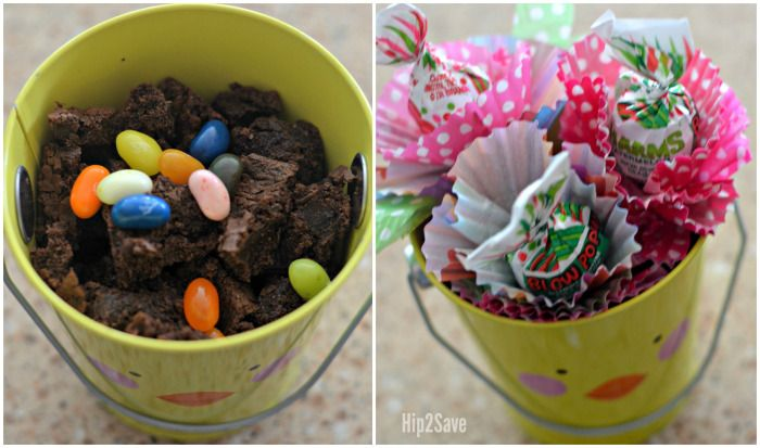 How to Grow Lollipop Flowers from Jelly Beans – Hip2Save