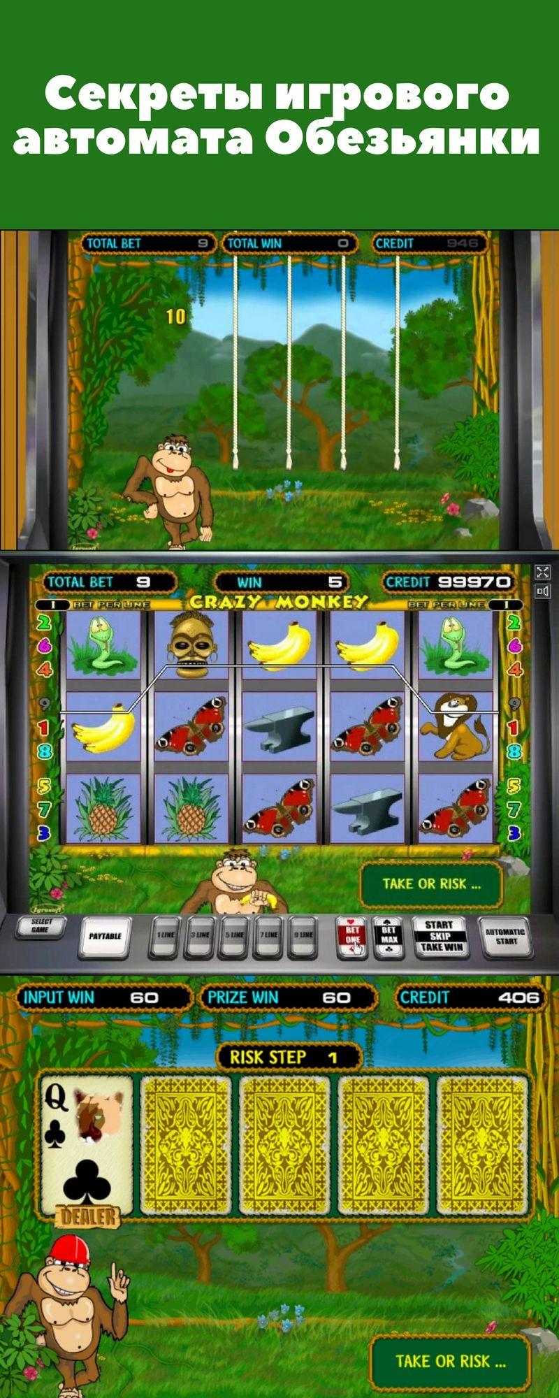 бесплатно и игровые в скачать нее обезьяны автоматы играть