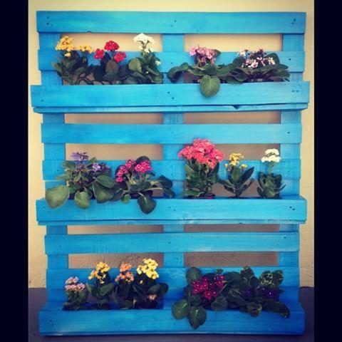 Invista no jardim vertical para decorar sua casa, linda peça jardineira em madeira de palete, tamanho de 1,00 x 1,20. Preço promocional - R$ 130,00  Disponível nas cores lilás, preto, vermelho, kiwi, amarelo e madeira natural. 'enquanto durarem estoques'  #scdecoracao #sustentabilidade #amor #love #paineljardineira #painelmadeira #palete #decore #decoracao #sustentabilidade #scdecoracao #madeirademolicao #madeirapalete #sustentabilidade #pallete #jardimvertical #jardineira #retro #rustico…