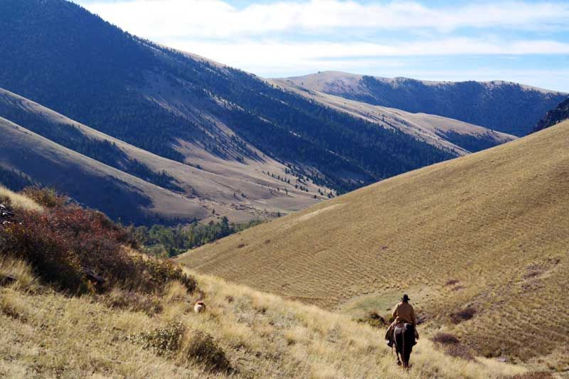 Dude Ranch Vacation Is The Way To Enjoy Eco Tourism In The Us West