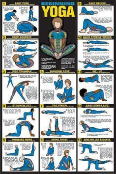 beginner  beginning yoga yoga education yoga help