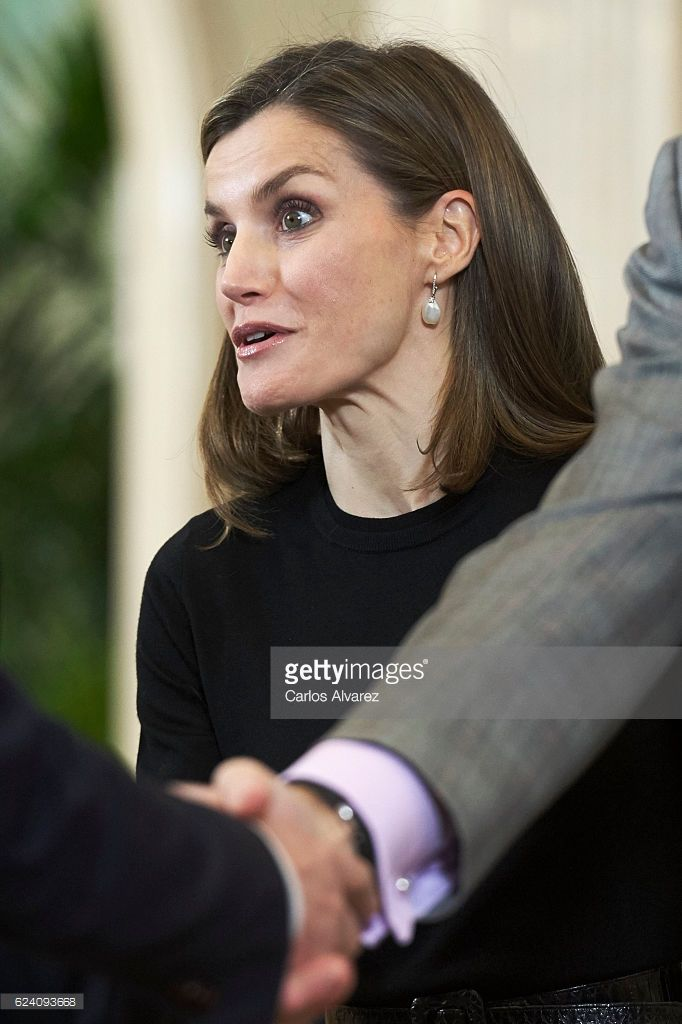 Queen Letizia of Spain receives TVE members at Zarzuela Palace on November 18, 2016 in Madrid, Spain.