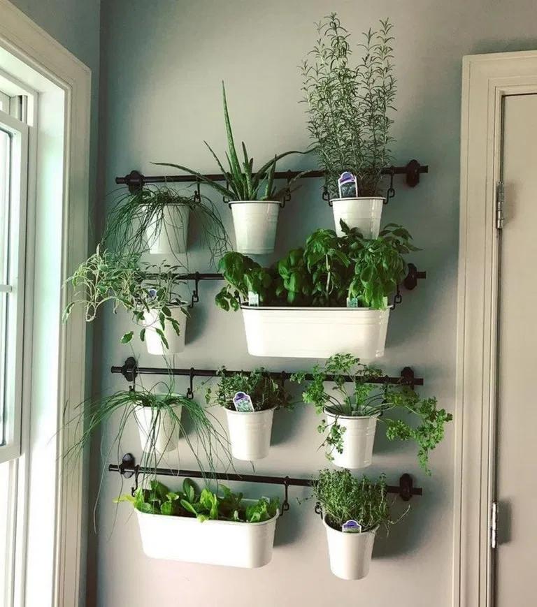 container gardening ideas desgins in 2020 herb garden on indoor herb garden diy wall kitchens id=49004