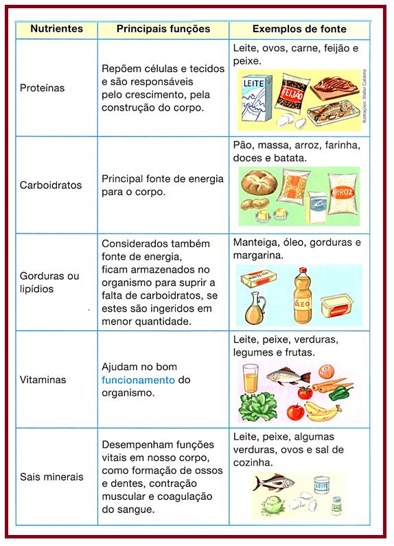 dieta balanceada em english