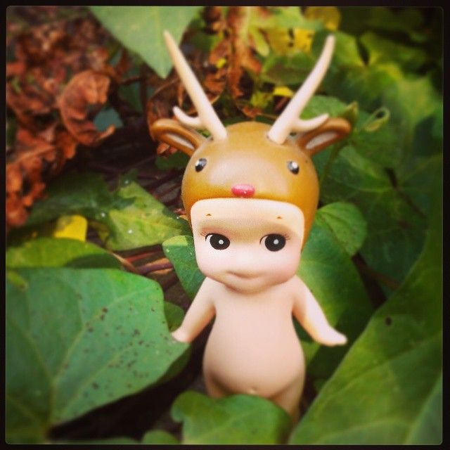"""#sonnyangel #deer #fall #fairytale #ivy"""