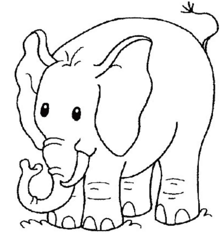 Disegni Per Bambini Di 3 Anni Disegno Con Un Elefante Disegni