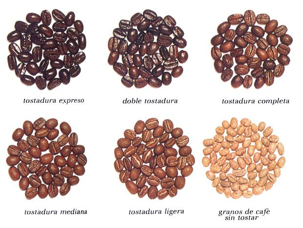 Tipos de granos de cafe buscar con google green for Tipos de granitos