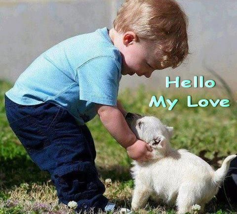 So Adorable Animals For Kids Animals Dogs And Kids