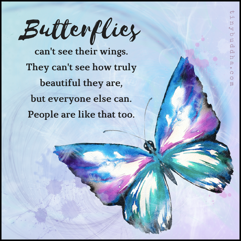 People Are Like Butterflies Tiny Buddha Butterfly