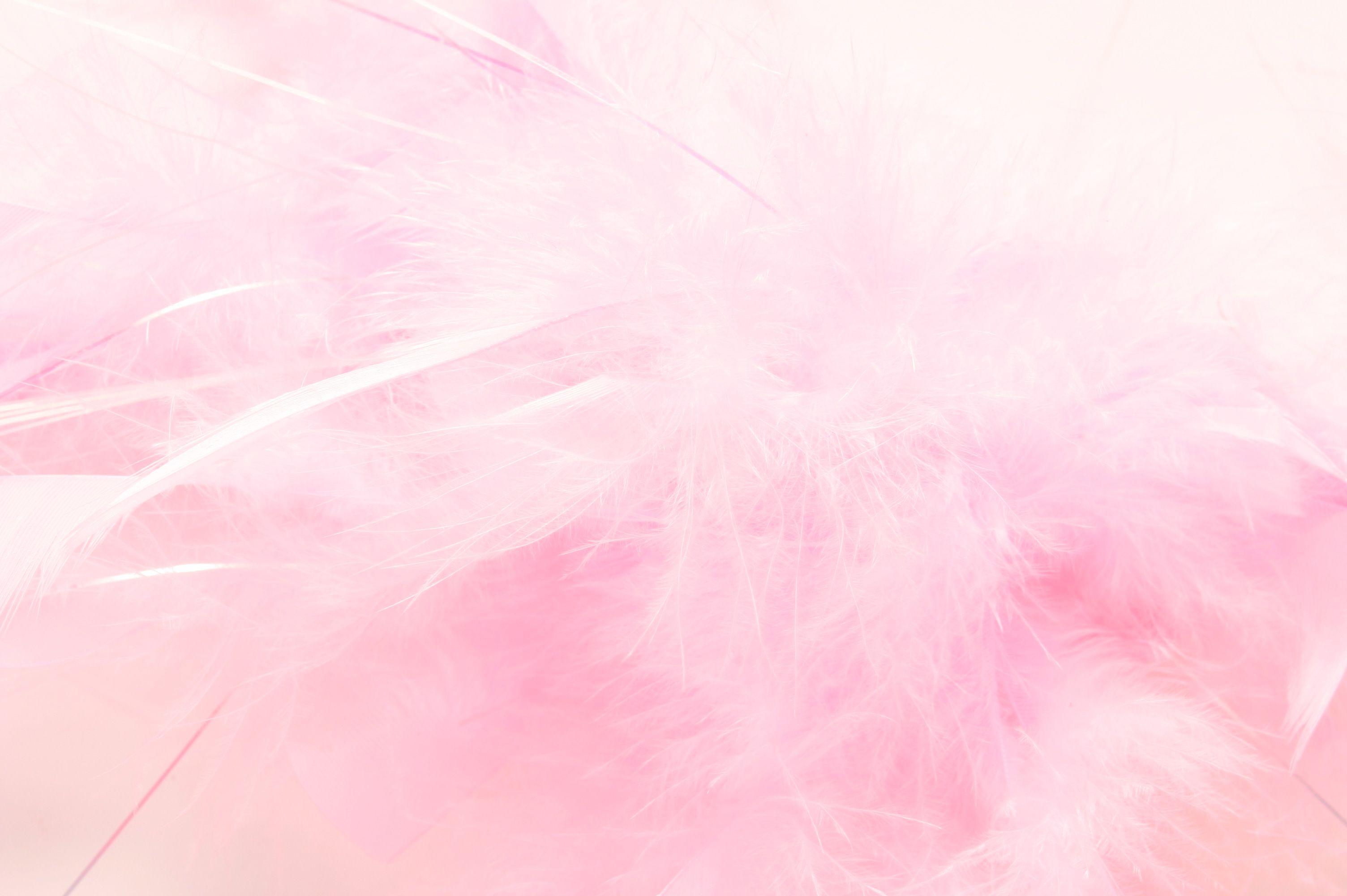 モテる ふわふわ ピンク Google 検索 モテる女 モテ ピンク