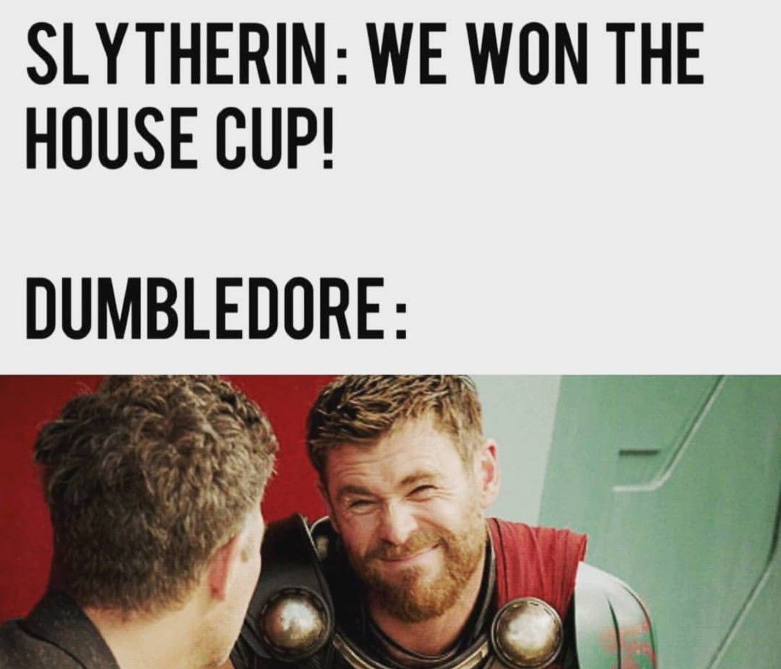 Pin By Gloria On Harry Potter Harry Potter Funny Harry Potter Memes Hilarious Harry Potter Memes Clean