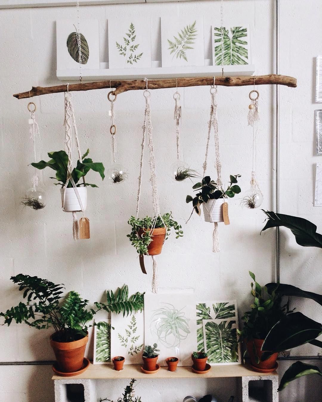 how to optimize the space under the bed  hanging plants