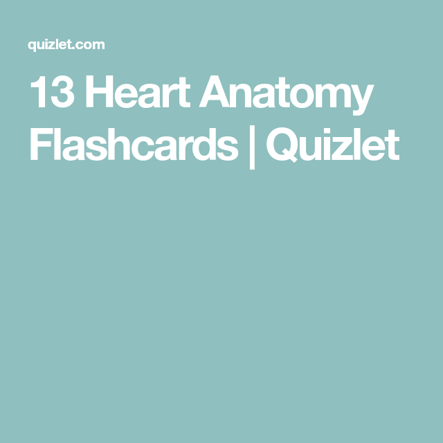 13 Heart Anatomy Flashcards Quizlet Med Cardiac Circulatory