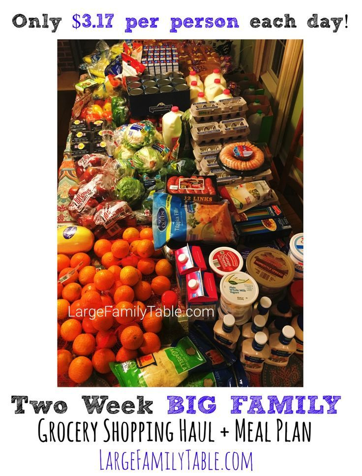 , Two Week BIG FAMILY Grocery Shopping Haul & Meal Plan (Only $3.17 per person per day!), Family Blog 2020, Family Blog 2020