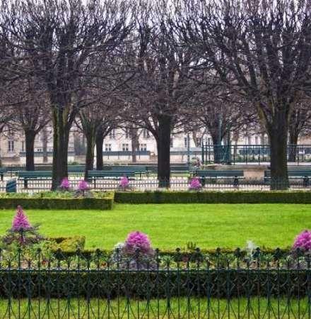 Jardin de Notre Dame II