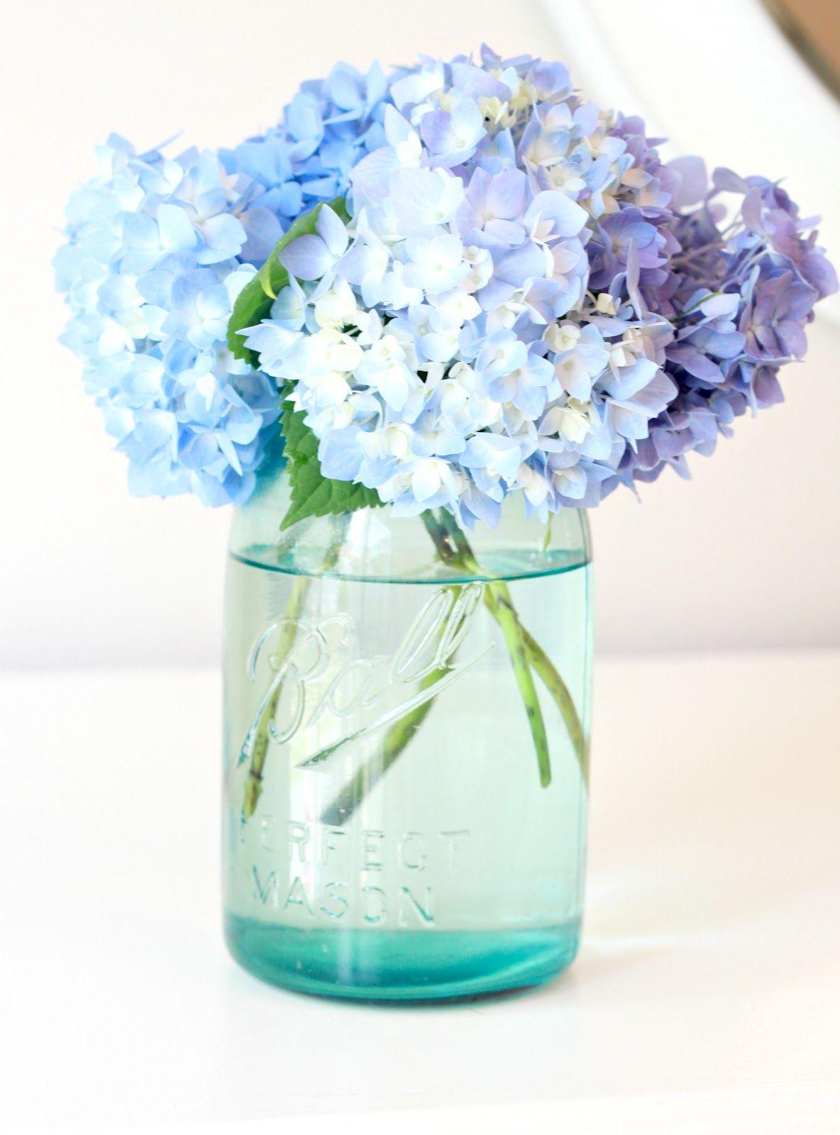 Tip to Keeping Cut Hydrangeas Looking Fresh....