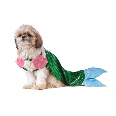 fcd5e7cfcfd Mermaid Tail Dog Costume | Petals and Tails | Best dog halloween ...