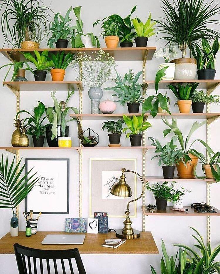 Pin de m-a lavigne en boho decor | Pinterest | Decoracion interior ...