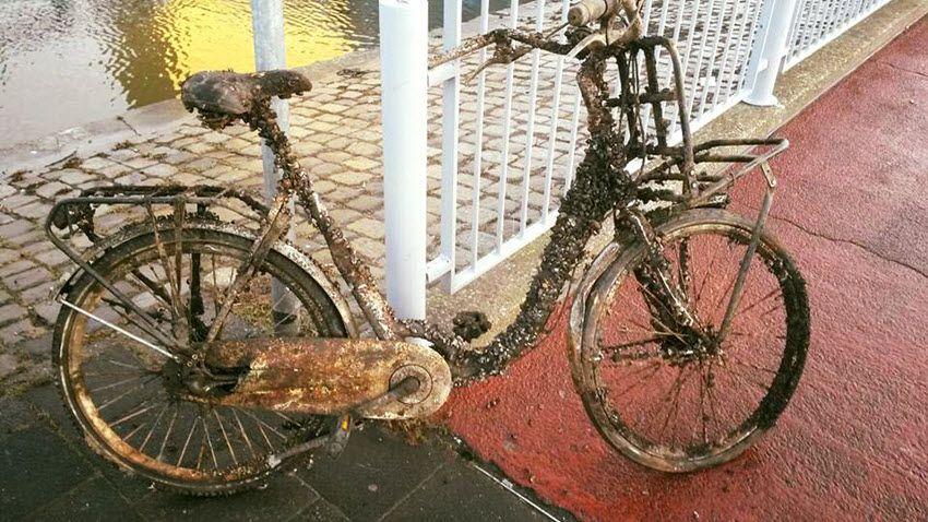 Een doekje erover en de fiets is weer als nieuw... (foto: fietshumor)