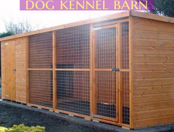 Leestock Cattery Dog boarding kennels, Dog boarding, Cattery