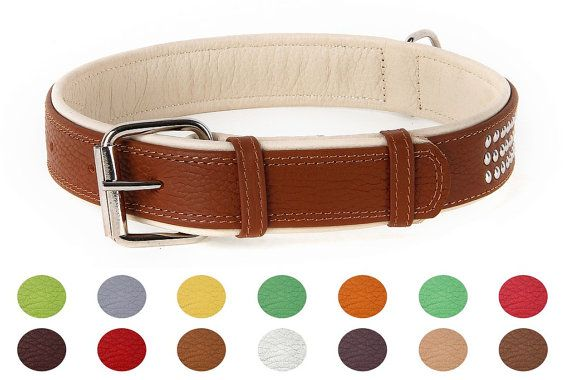 Double Ply Studded Leather Dog Collar Colorful by