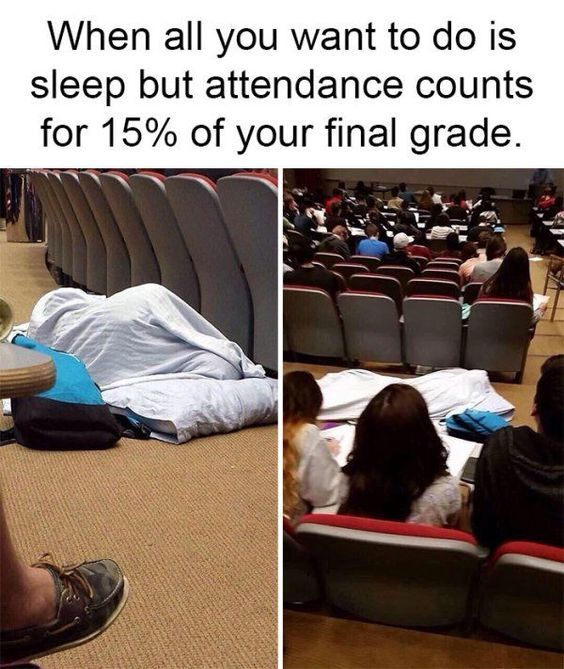 College Student Problems College Memes Funny Memes Funny Pictures