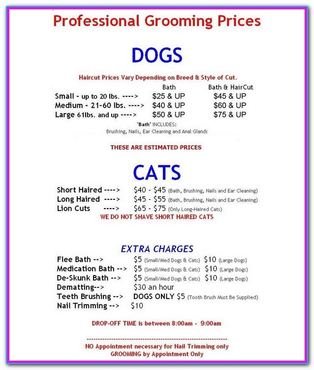 Dog Grooming Price List Near Me Pet Grooming Price List I Cannot