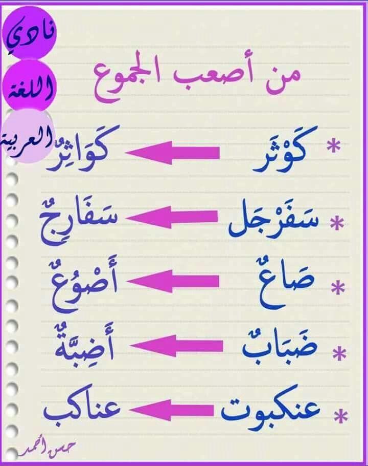 أصعب الجموع في اللغة العربية Learn Arabic Language Arabic Language Learning Arabic