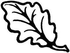 image result for oak leaf templates oak leaves acorns