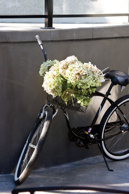 2020 H H It List Contest Bicycle Bicycle Basket Hydrangea