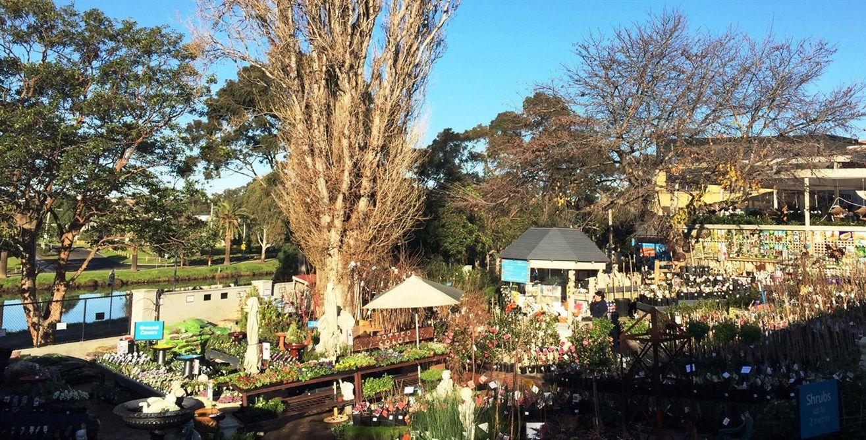 Poyntons plant nursery and garden centre Melbourne  Cafe, homewares ...