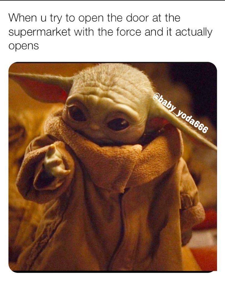 22 5k Likes 78 Comments Baby Yoda Baby Yoda666 On Instagram With Me The Force Is Starwars Babyyoda M Yoda Meme Yoda Epic Fails Funny