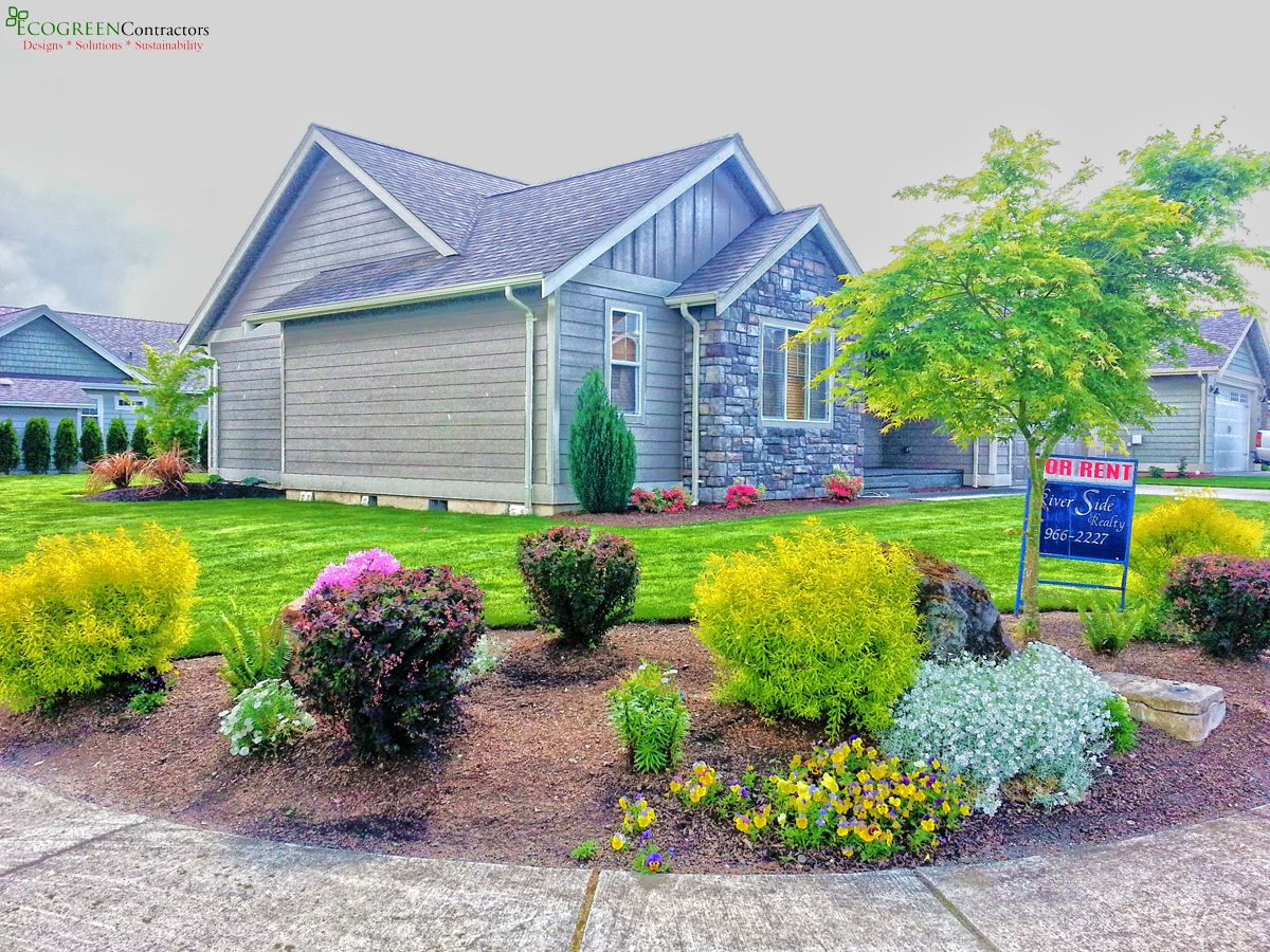 4 Year old Corner Lot Landscaping in Lynden WA 98264 Landscape