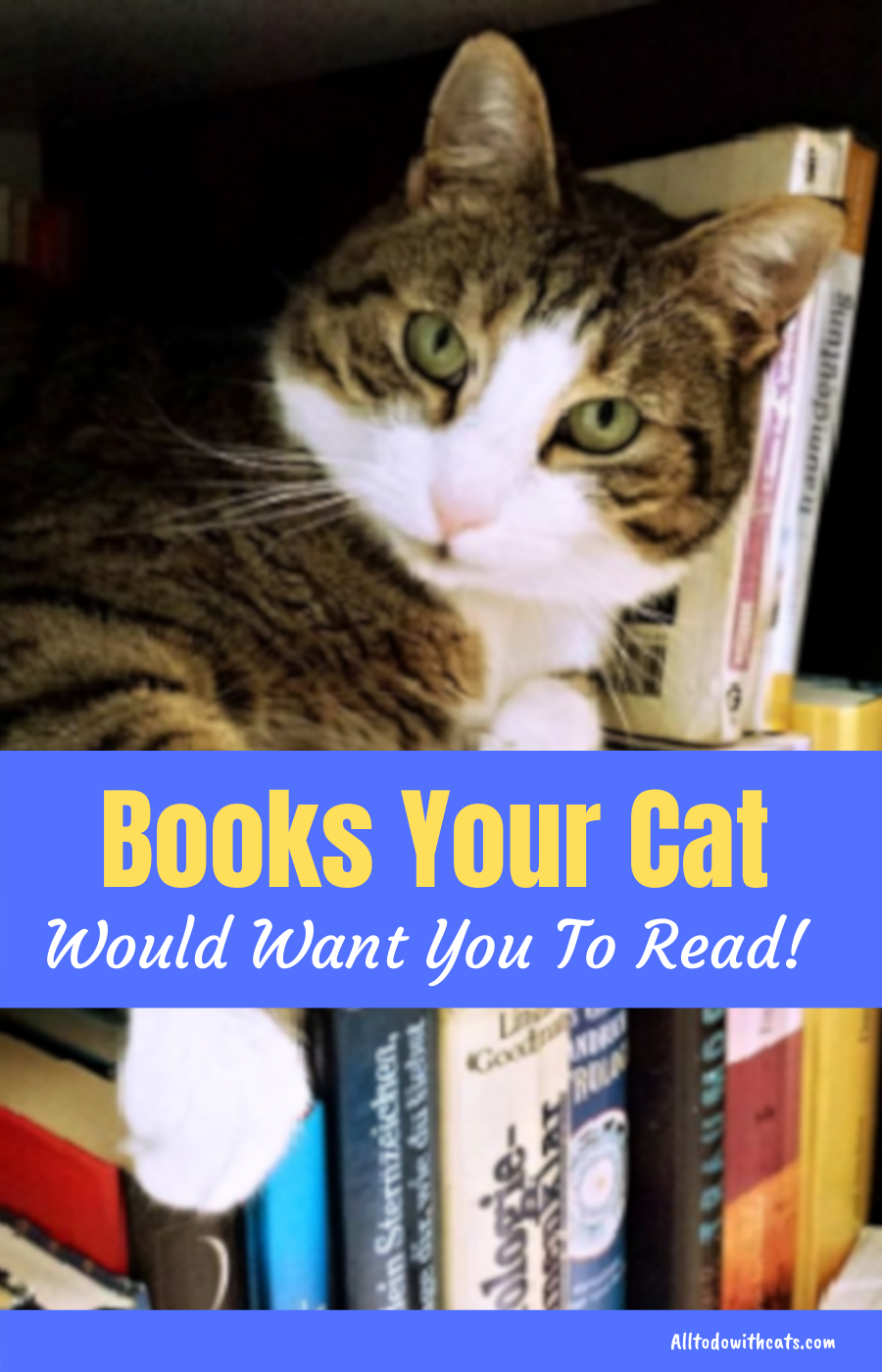 Best Books About Cats Every Feline Lover Should Read In 2020 Cats Cat Coloring Book Cat Parenting