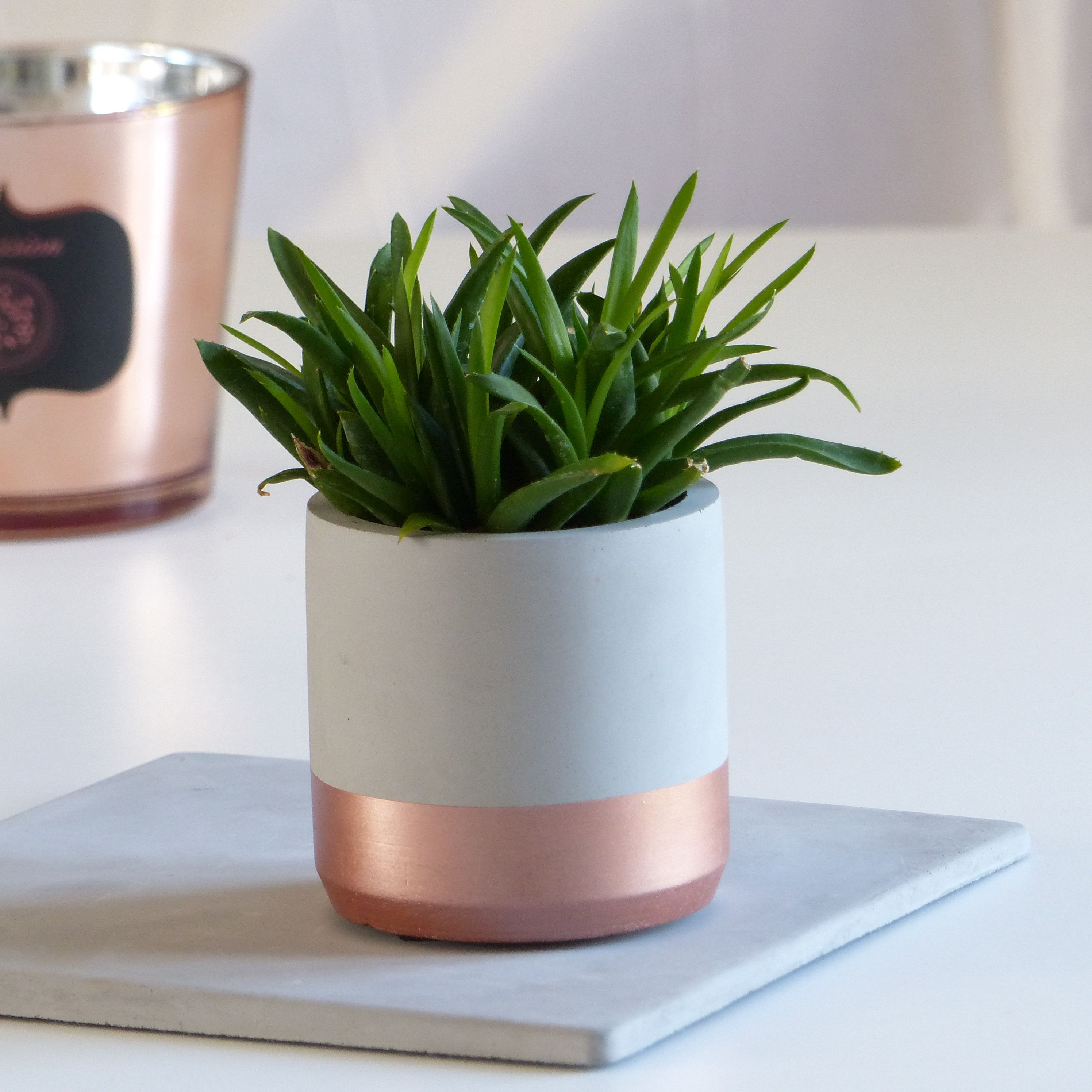 Cache Pot D Interieur Gris Et Rosegold Pot De Fleurs Design Rond
