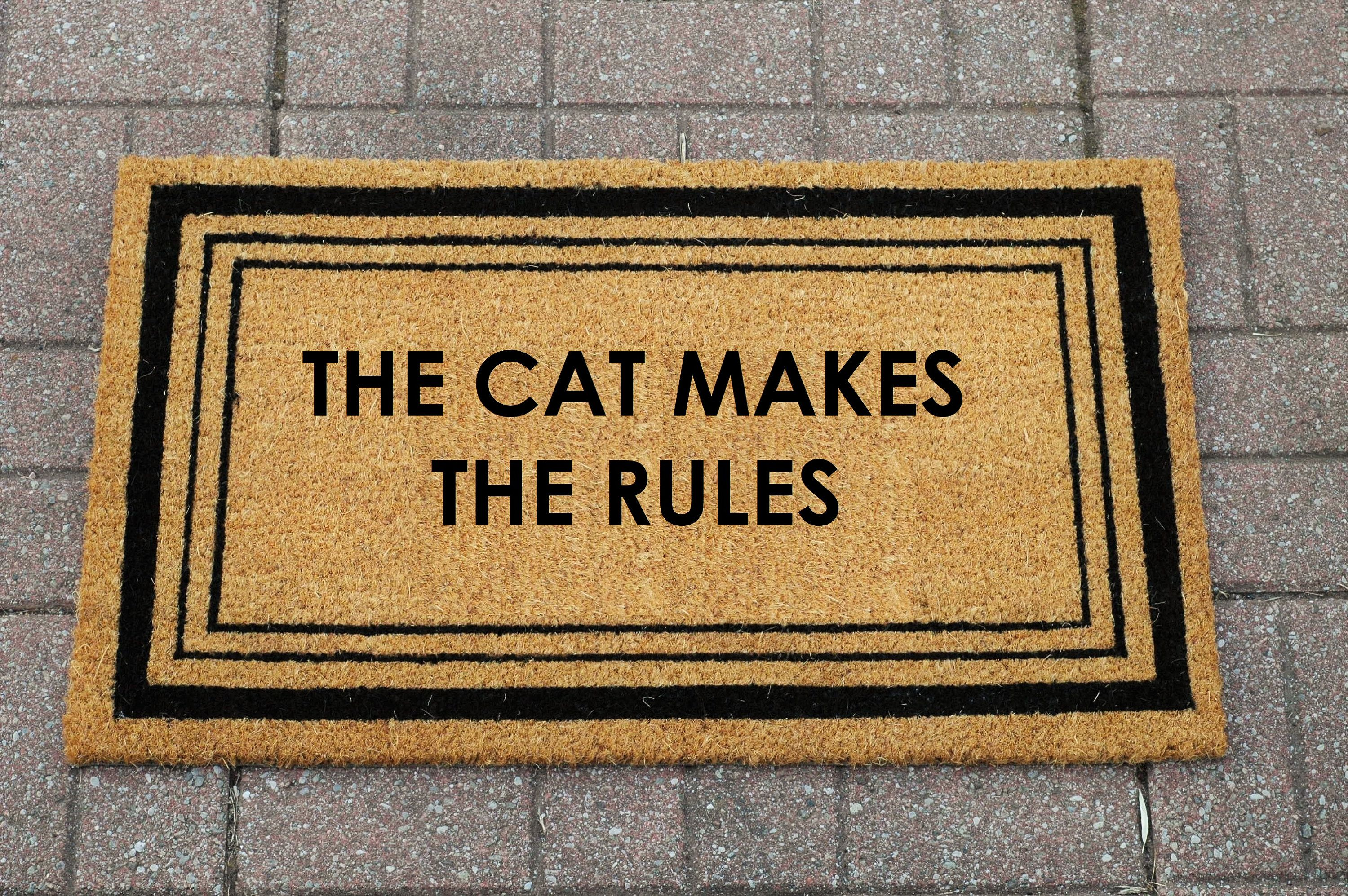funny doormats decor door cute custom accent are elleandivey by perfect home our doormat pin mats the