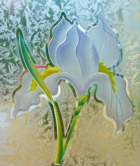 Sandblast Frosted Glass By Sans Soucie This Iris Flower