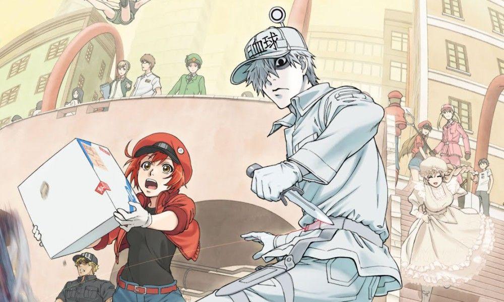 Anime Noodles Hataraku Saibou Anime love, Anime y Netflix