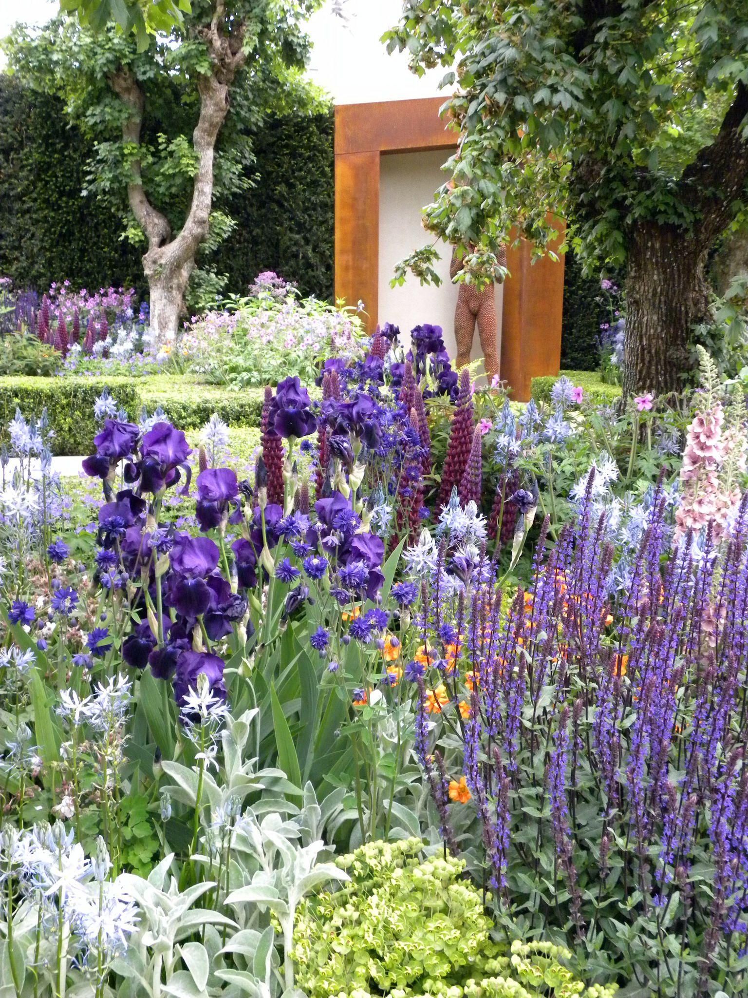 Rhs Chelsea Dutch Gardens Iris Garden Garden Design